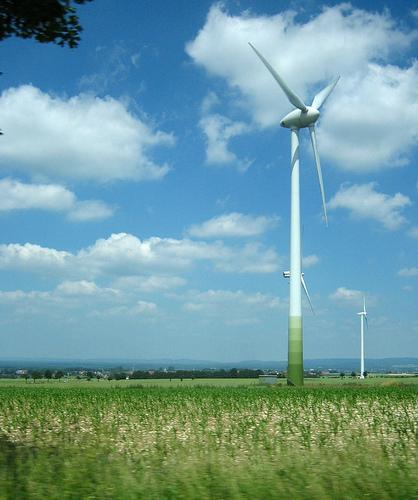 Carbon Divestment