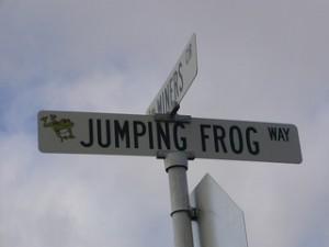 Hightower-Frog-pixie_bebe