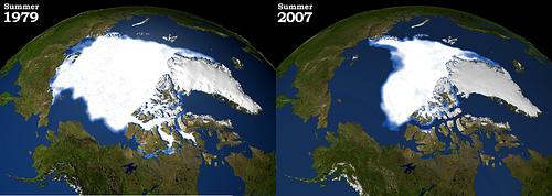 Chill the Drills in America's Arctic