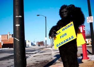 Monkey Will Work for Bananas