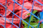 government-regulation-money-politics-red-tape