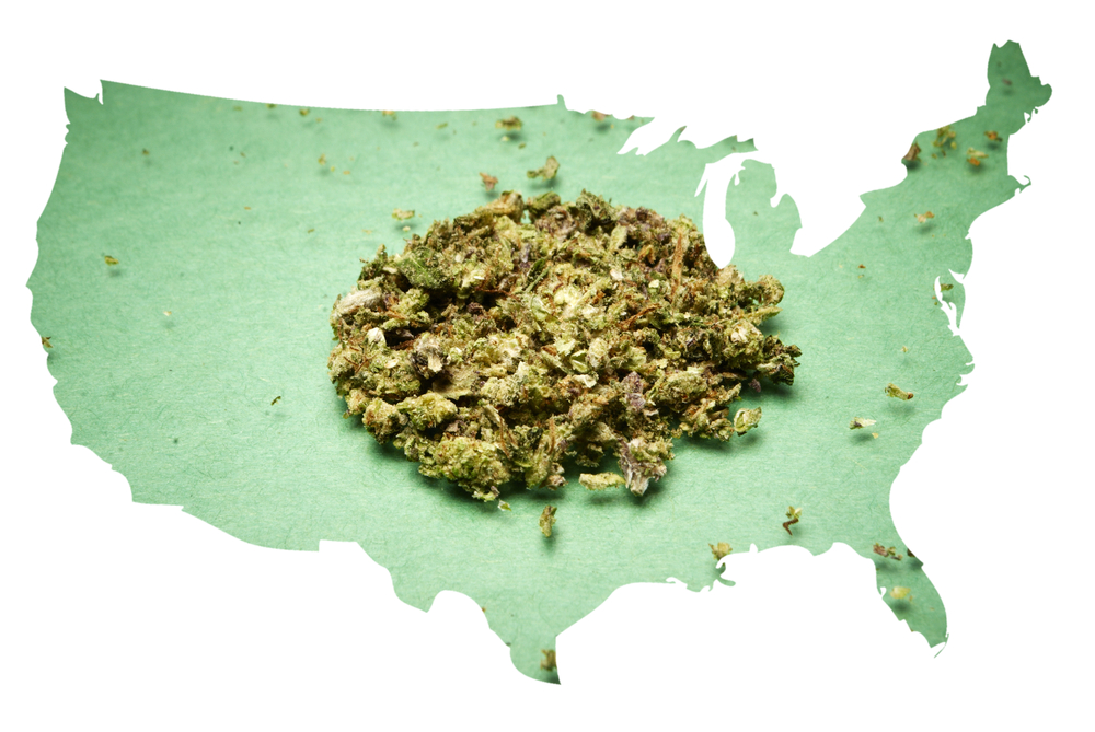 State by State, the War on Cannabis is Ending