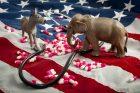 health-care-democrats-republicans-congress